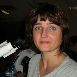 Dr. Matti Kiupel, Anatomic Pathologists, Asia Veterinary Diagnostics